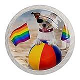 Tirador de manijas de cajón para el hogar, cocina, tocador, armario-Rainbow Gay Dog en la playa