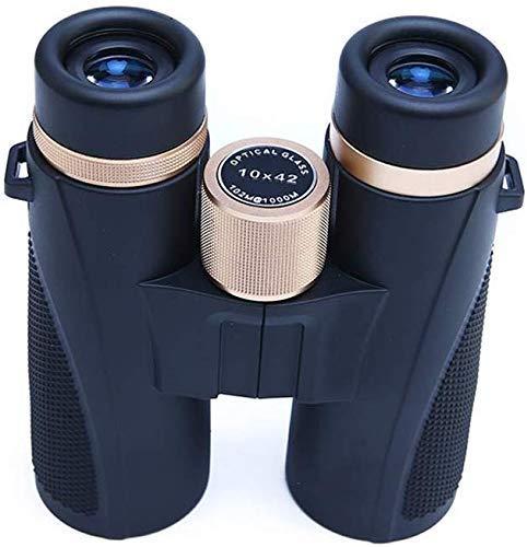 Binoculares De Concierto para Telescopio Aficionado 8X10X Alta Definición Visión Nocturna con Poca Luz Al Aire Libre Viaje Conveniente Observación De Aves Objetivo Lupa Vista, Estilo B