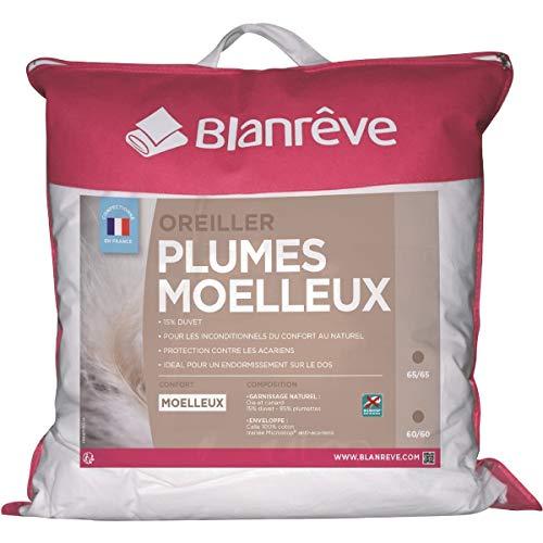 Blanreve Oreiller Duvet et plumettes oie et Canard Moelleux Anti-acariens 60x60cm (Lot de 2)