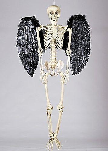 ahorrar en el despacho Magic Box Esqueleto del Apoyo del Partido de de de Halloween con alas Negras de la Pluma  orden ahora con gran descuento y entrega gratuita