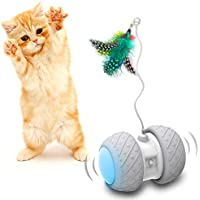 Comgoo Electric Moving Fish Cat Toy