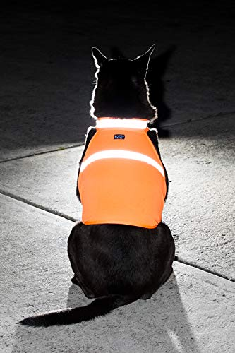 2PET Dog Hunting Vest and Safety Reflective Vest - Used for High Visibility - Protects Pets from Cars & Hunting Accidents in Both Urban and Rural Environments - Small Radiant Orange