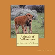 Animals of Yellowstone: A Children's Picture Book