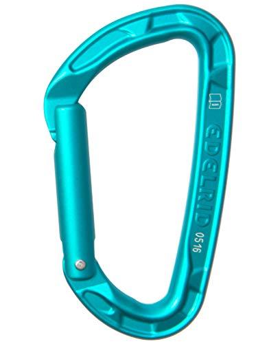 Edelrid Unisex– Erwachsene Karabiner Pure Straight, Icemint, einheitlich