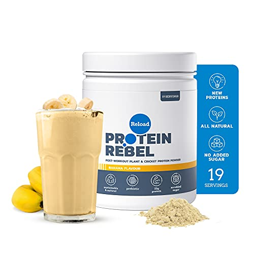 Protein Rebel – Reload Post Workout Protein Powder with Pea Protein and...