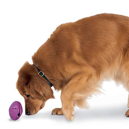 PetSafe Busy Buddy Twist 'n Treat, Treat Dispensing Dog Toy, Large