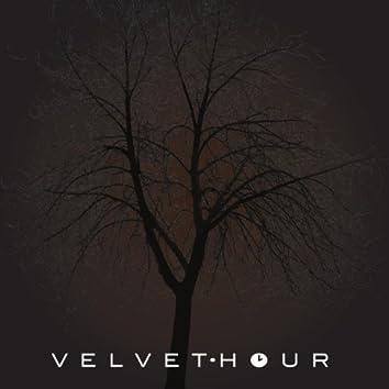 Velvet Hour