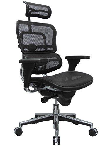 Eurotech Seating Ergohuman High Back Mesh Managers Chair, Black