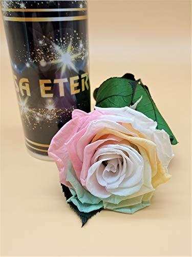 Almaflor Rosa eterna Arcoíris Pastel Extra. Rosa preservada arcoíris Pastel Extra. Hecho en España.