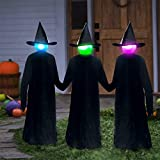 TGone 5.6 ft Life Size Yard Stake Glowing Witch Decor Spooky Halloween Decoration, Glow in The Dark Party Supplies Creepy Props, Pack 3