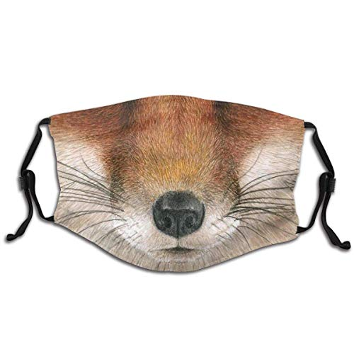 Kids Face Mask Red Fox Washable Reusable Cute Cool with 2 Filters for Girls Boys