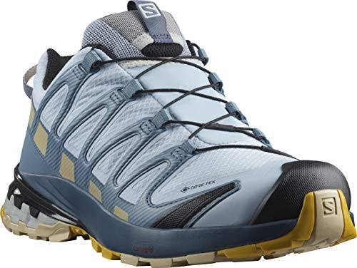 Salomon Women's XA PRO 3D v8 GTX W Trail Running, Kentucky Blue/Dark Denim/Pale Khaki, 8.5