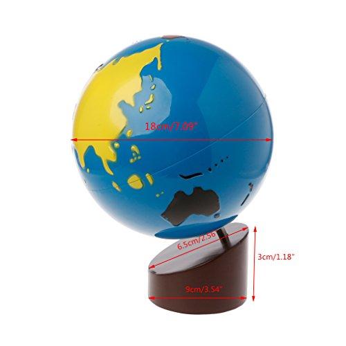 Montessori Sandpaper Globe et Colored Globe Set Outil de développement