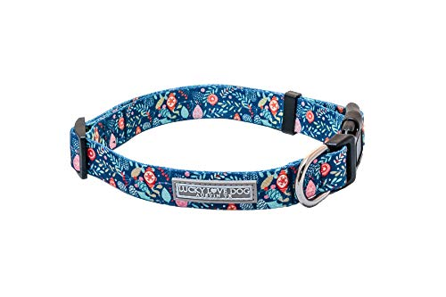Lucky Love Dog Hundehalsband, niedlich, bunt, bequem, für kleine, mittelgroße und große Hunde, Hundehalsband, Geschenktasche, Teil des Kaufs gespendet an Hunderettung