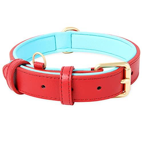 HEELE Collar Perro, Collar de Perro Acolchado de Cuero, Tacto Suave de Piel Auténtica, Ajustable, Perros Pequeños, Medianos, Rojo, S