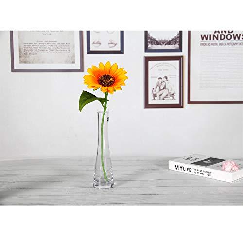ComSaf21.5cm花瓶ミニ花器ガラス製透明フラワーベース一輪挿し水栽培インテリア飾りプレゼント