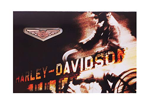 Harley-Davidson Bronze Wings Pin & Card Set