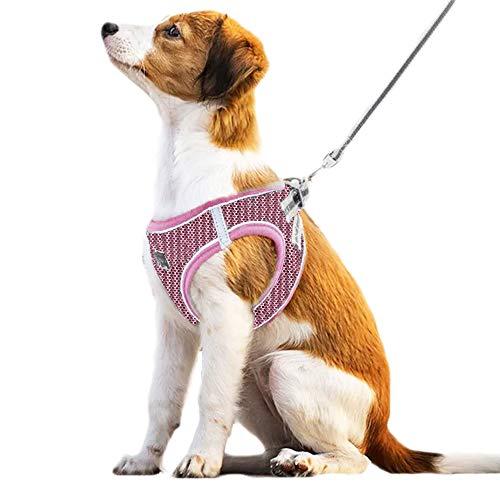 Anlitent Hundegeschirr und Leine aus weichem Netzstoff, kein Ziehen, für Spaziergänge, ausbruchsicher, für Welpen, kleine Tiere, Katzen, einfach zu montierendes Hundehalsband (groß, rosa Netz)