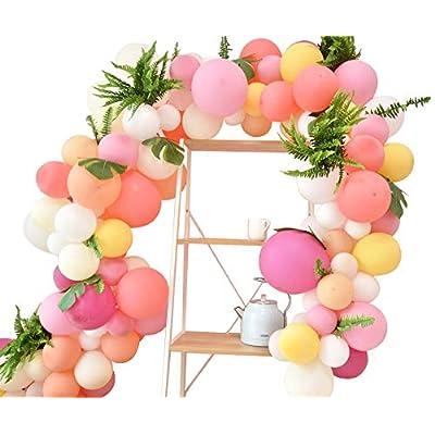 Pink Balloon Arch Garland Kit,100pcs Pastel Pin...