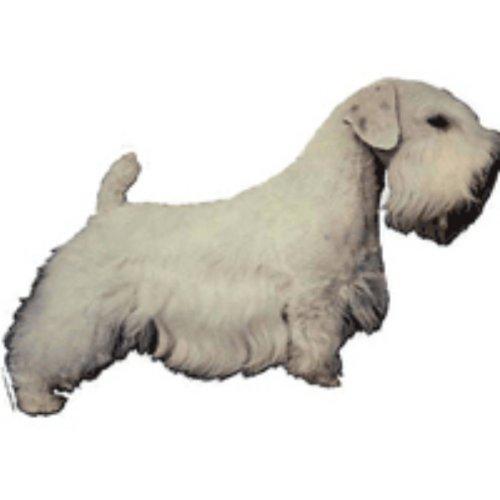 World Stickers Sweden AB Autocollant Sealyham Terrier small