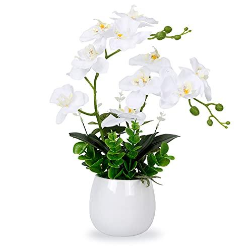 RENATUHOM Künstliche Orchidee, weiß, künstliche Orchidee, Seide, Phalaenopsis, künstliche Blumen, Arrangement, Topf-Orchidee, 12 Köpfe mit Zwei Stielen Pflanze Zuhause Tisch Home-Dekoration