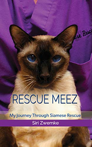 Rescue Meez: My Journey through Siamese Rescue