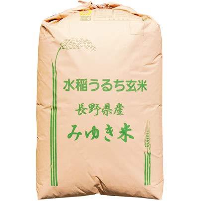 【玄米】長野県飯山産 玄米 JAながの 「幻の米」 こしひかり 1等 30kg (長期保存包装) 令和2年産 新米