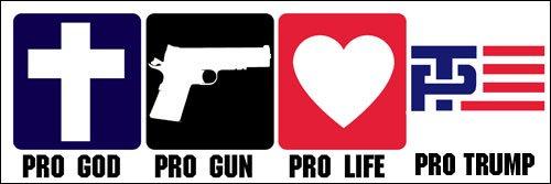 Pro God - Gun - Life - TRUMP Bumper Sticker (Conservative Christian Republican)