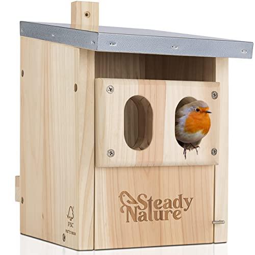 Steady Nature Nistkasten für Rotkehlchen - Nistkasten für Rotschwänzchen, Nistkasten Rotkehlchen - Vogelnistkasten, Rotkehlchen Nistkasten - Nistkasten Rotschwänzchen, Nistkästen für Vögel