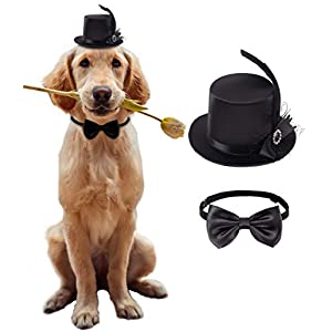 Coucoland Dog Costume Top Hat and Bow Tie Feather Birthday Hat and Bow Tie Collar for Dog Cat Pet Party Accessories Costume Dog Party Supplies for Halloween Christmas
