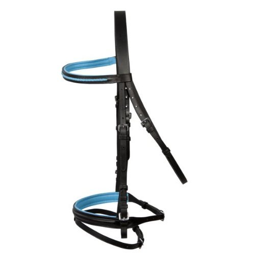 PFIFF Basicline Trensenzaum, schwarz-hellblau, Shetty