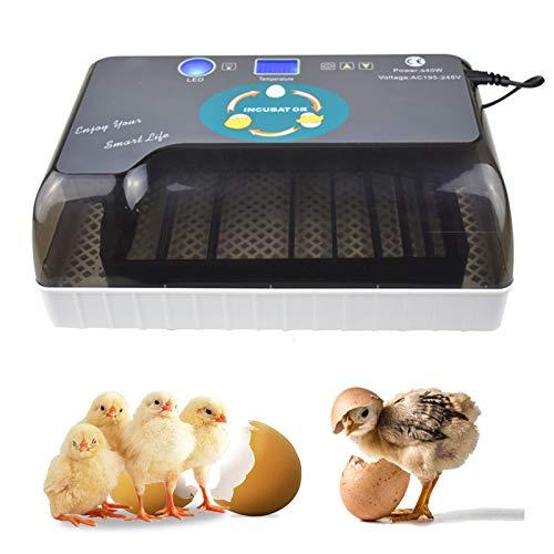 KKTECT Eier Inkubator Temperatur automatisch anpassen Eier automatisch drehen Digitaler vollautomatischer Inkubator mit 12 Eiern Verbesserter Geflügelfänger zur Inkubation Huhn / Ente / Taubenei