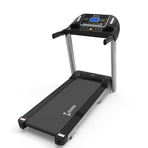 Best cockatoo treadmill
