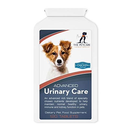 De Petcare Factory Advanced Urinary Care Supplement voor Honden, Met Cranberry Poeder, Mashmellow Root, D-mannose, Liquorice, Astragalus Root & Nettle Seed, 120 tabletten, UK Gefabriceerd