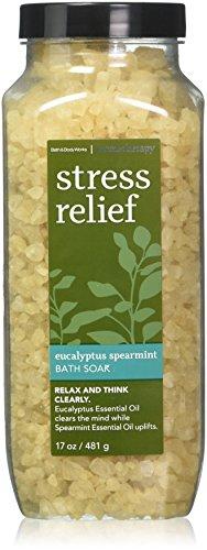 Bath and Body Works Eucalyptus Spearmint Bath Soak Aromatherapy