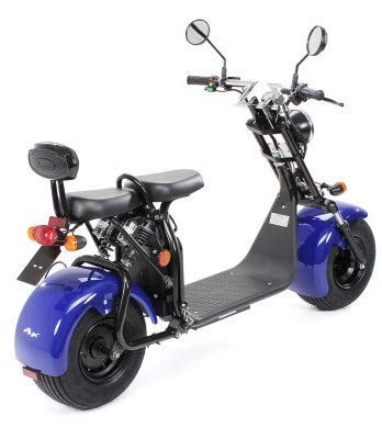 eFlux Harley Two Elektroroller Scooter Bild 5*