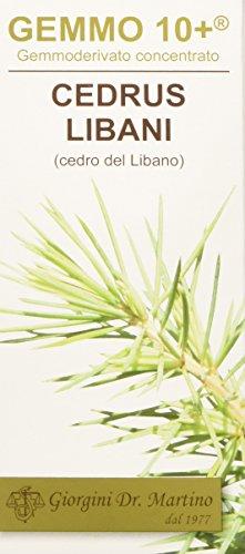 Dr. Giorgini Integratore Alimentare, Cedro del Libano Gemmoderivato Concentrato Liquido Analcoolico - 100 ml