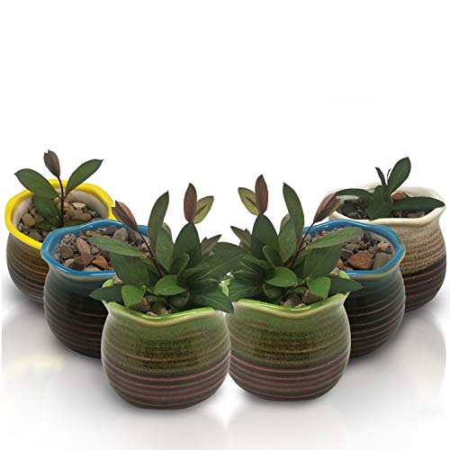 Succulent Pots 6 Pack - Mini Ceramic Pots 3.0 Inch, Small Flower, Planter, Bonsai, Cactus Pot with a Drainage Hole - Perfect Decoration Gift Idea