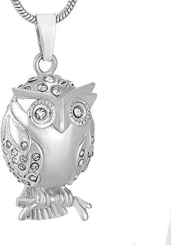 Búho con collar de urna de cremación de recuerdo con soporte para cenizas de animales de acero inoxidable y cristal transparente