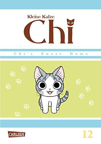 Kleine Katze Chi 12 (12)
