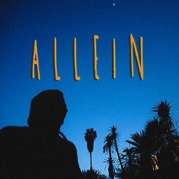 Allein (feat. Barré)