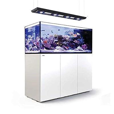 Reefer Red Sea Peninsula Deluxe 650 L Aquarium Complet Blanc