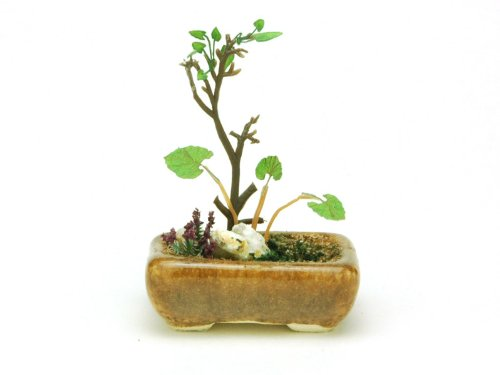 Platz 1/12 Scale Painted DE BONSAI (PLATZ) Co., Ltd. en planten (The bonsai) BONN01 vierkante kom (thee) (Japan import / Het pakket en de handleiding zijn geschreven in het Japans)