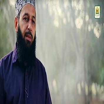 Manzar Fiza-e-Dehr Mein Sara Ali Ka Hai