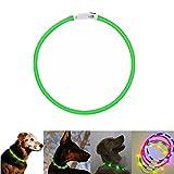 Case Wonder Collier Chien LED USB rechargeable Longueur réglable Animal de compagnie sécurité Collier Collier Chien Lumineux étanche Collier Lumière Brillant Chien Chat Pet (Vert)