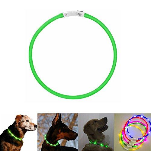 Case Wonder LED Leuchthalsband Hunde Halsband -USB Wiederaufladbar -Längenverstellbarer Haustier Sicherheit Kragen/Blinkende Kragen Deluxe -Improved Sichtbarkeit & Sicherheit (Grün)