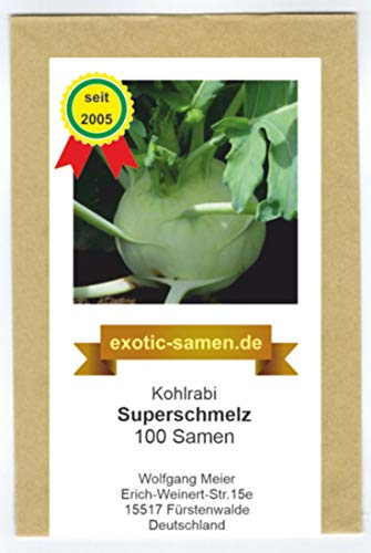 Kohlrabi - Superschmelz - riesige Knollen - 2 bis 4 kg - 100 Samen