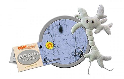 Giant Microbes Brain Cell (Neuron) Plush Toy