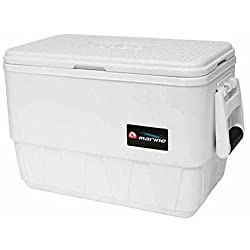 the best cheap marine cooler