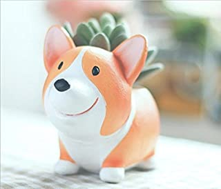 SUN-E Cute Animal Shaped Cartoon Home Decoration Succulent Vase Lovely Corgi Dog Flower Pots (Style-A)
